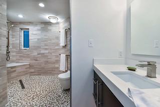 WholeHouseUniversalDesignCotyAwardWinner-sink-shower