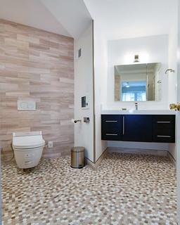 WholeHouseUniversalDesignCotyAwardWinner-sink-toilet