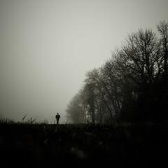 Walk in fog V