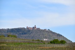 Chateau du Haut-Koenigsbourg - Photo of Illhaeusern