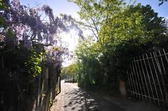 La ruelle au soleil - Photo of Marcoussis