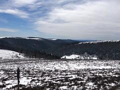 Monts du Forez / Les Hautes Chaumes - Photo of Sauvain