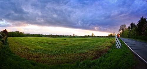 Abendhimmel mit frisch gemähter Grünfläche   2. Mai 2019   Tarbek - Schleswig-Holstein - Deutschland
