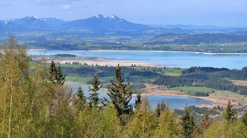 Bannwaldsee und Forggensee