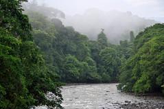 Sarapiquí River,  Rio Sarapiquí, Costa Rica.