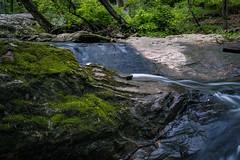 Mossy Croydon Creek Rocks