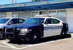 Algona Police Dodge Charger (2)