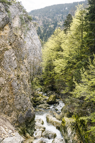 Wanderung entlang der Areuse - Champ-du-Moulin-Neuenburg-Schweiz-CH190424120636-©patrikwalde_com.jpg