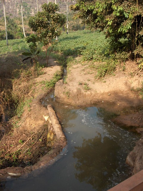 Diverting water to fields, Kindia, Guinea (2)