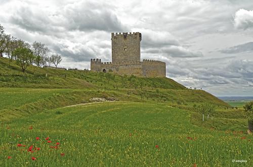 Castillo de Tiedra  (Valladolid)  Spain