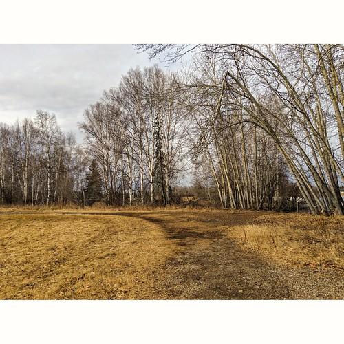 Creamer's Field Alaska