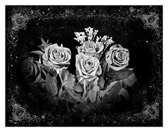 Bouquet of Roses in Memory of Mom