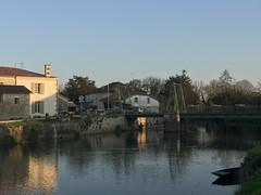 La sevre Niortaise à Magné le 21/03/19 - Photo of Sansais