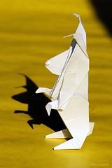 Origami - Fred Rohm