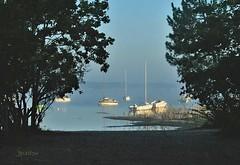 Lac de Carcans-Maubuisson. - Photo of Carcans