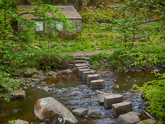 Stepping stones near Gibson Mill