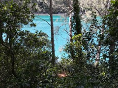 Barrage du Revest / Lac du Revest - Toulon (Var) - Photo of Toulon
