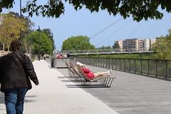 Bancs de la Promenade au bord de la Têt à Perpignan - Photo of Rivesaltes