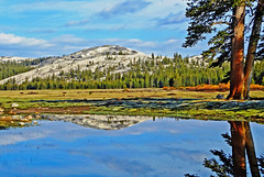 Tarn Reflection, Tuolumne Meadow, Yosemite 5-15