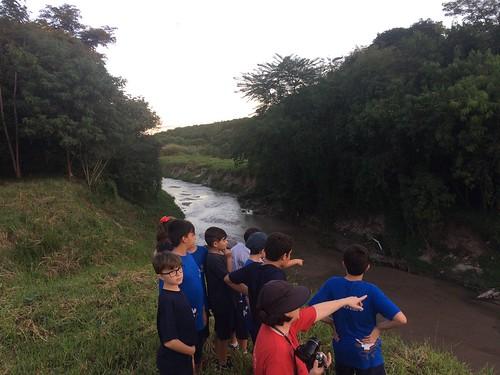 Córrego_Vidoca