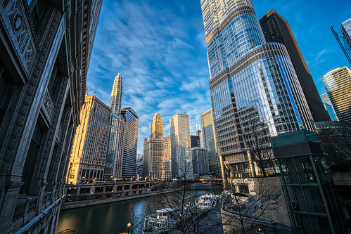 A Morning in Chicago #11