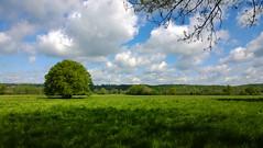 Autreppes landscape.