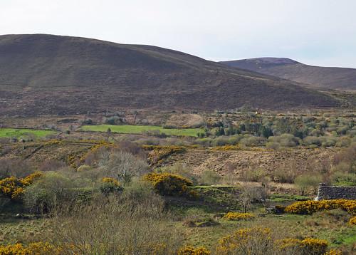 Irish vista 2 off the N70