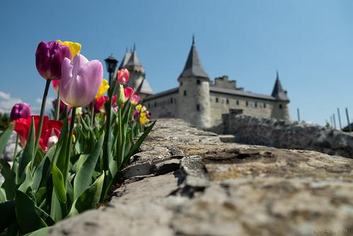 Mini chateau