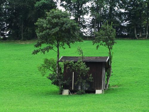 20110908 23 431 Jakobus Hütte Bäume Wiese_K