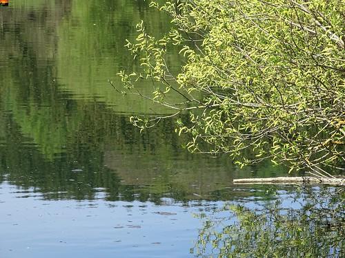 Entlang dem Fluss Günz -im Günztal zwischen Winterrieden bis Breitenthal - Along the river Günz -in the Günztal between Winterrieden to Breitenthal - Le long de la rivière Günz -dans la Günztal, entre Winterrieden et Breitenthal
