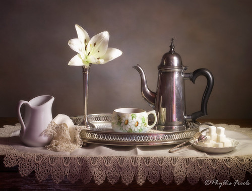 Still life with one lily