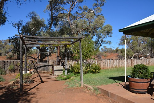 A corner of Holowiliena Station homestead garden, with gateway in boundary fence above a deep creek bed. Southern Flinders Ranges South Australia