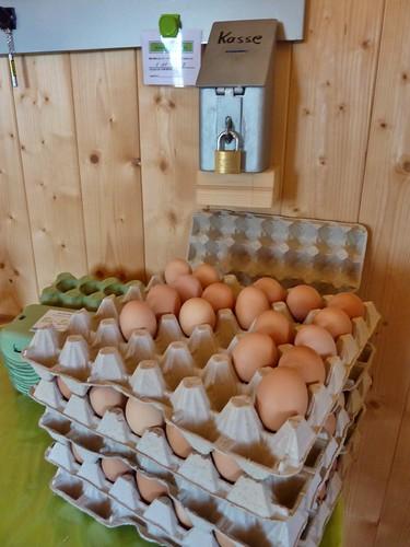 Frische Eier von glücklichen Hühnern