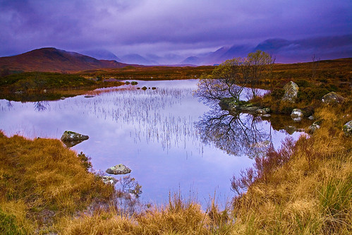 Pre Dawn on Rannoch Moor, Scotland