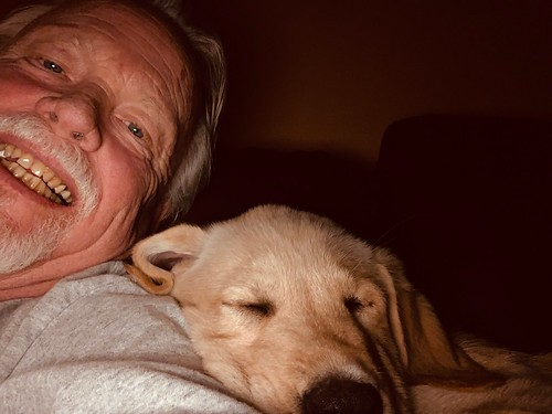 Dad and Rocky - 12 weeks