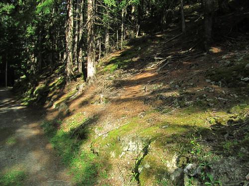 20110915 30 182 Jakobus Wald Weg