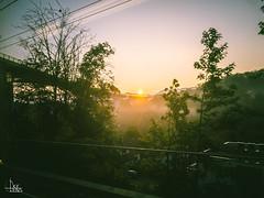 Sunrise Felsenau Selection