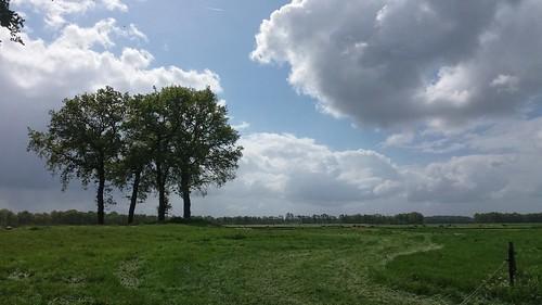 Een bewolkte bevrijdingsdag! Met soms wat zon - Foto: Tiny Post.
