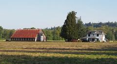 Arlington Farms