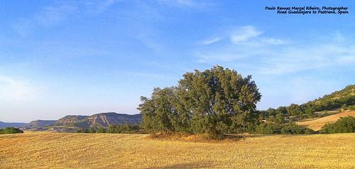 Road Guadalajara to Pastrana, Castilla la Mancha, Spain