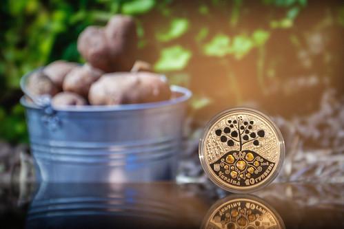 Пам'ятна срібна монета