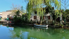 Jarnac - Photo of Chassors