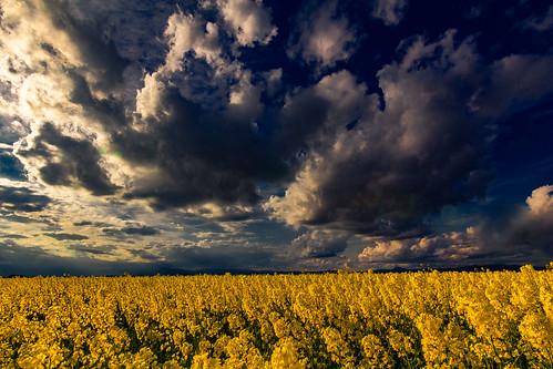 The storm that is coming ....., La tormenta que viene.....