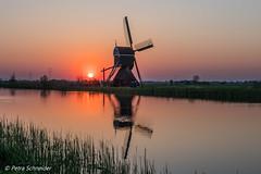 Belgium / Netherlands