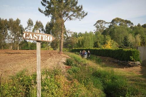 El Castro de Mohias / Mohias hillfort