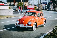 VOLKSWAGEN Beetle_1