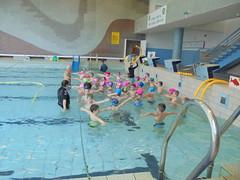 Plavecký kurz - Apríl 2019