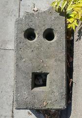 Concrete Face - Betongesicht