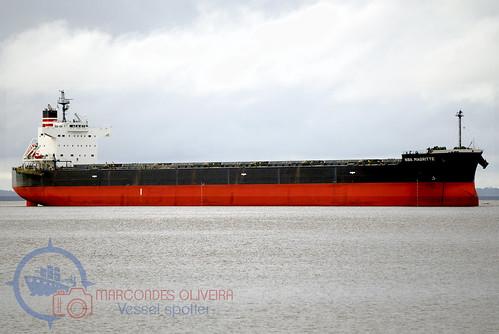 Navio  TIBERIUS (Bulk Carrier)