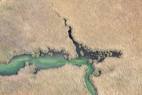 Nature Reserve Herrschinger Moos II